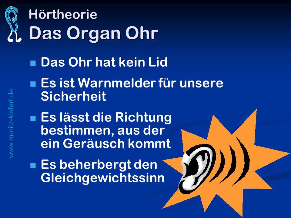 Hörtheorie Das Organ Ohr