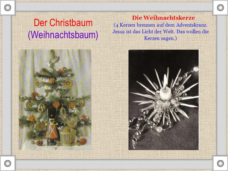 Der Christbaum (Weihnachtsbaum)