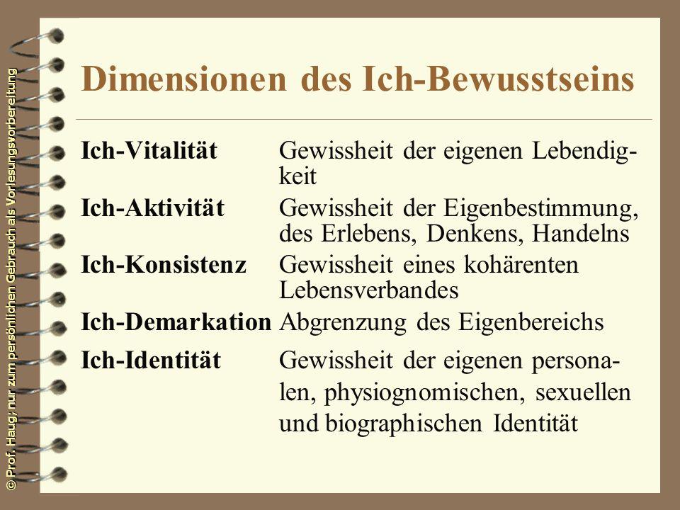 Dimensionen des Ich-Bewusstseins