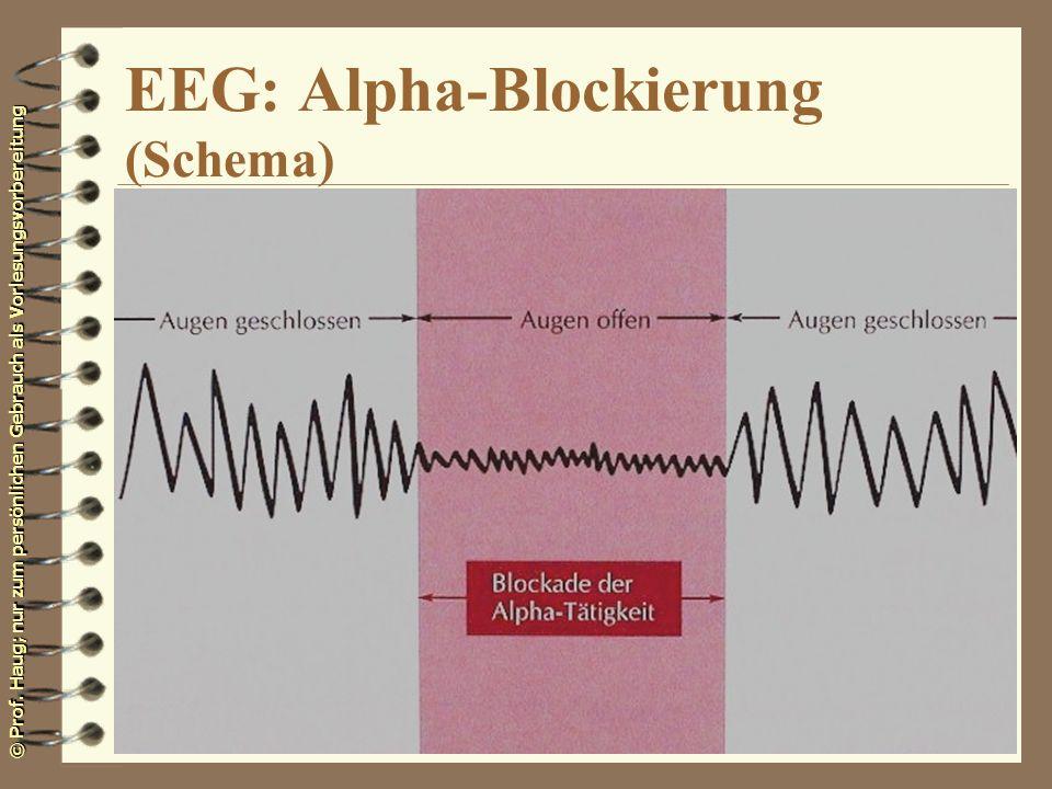 EEG: Alpha-Blockierung (Schema)