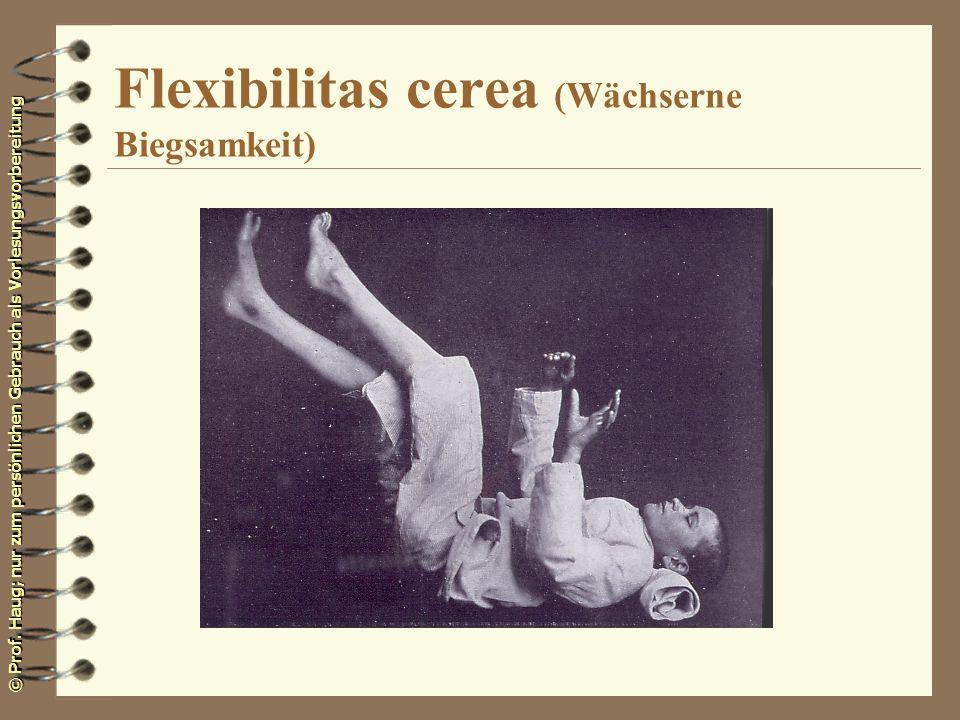 Flexibilitas cerea (Wächserne Biegsamkeit)