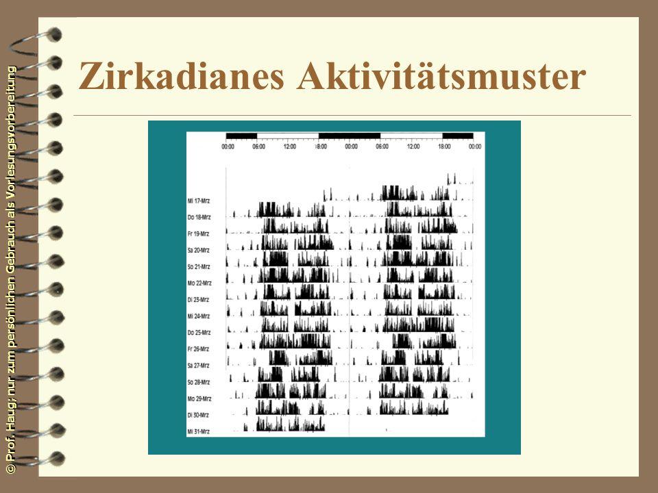 Zirkadianes Aktivitätsmuster