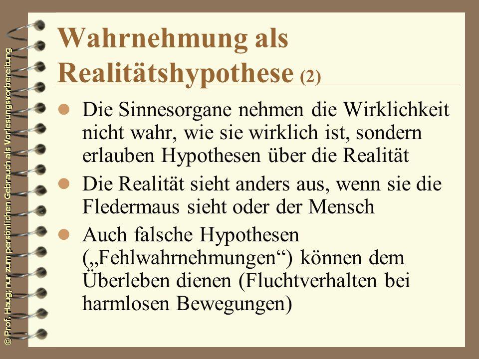 Wahrnehmung als Realitätshypothese (2)