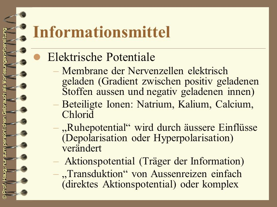 Informationsmittel Elektrische Potentiale