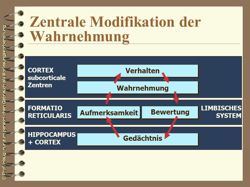 Zentrale Modifikation der Wahrnehmung