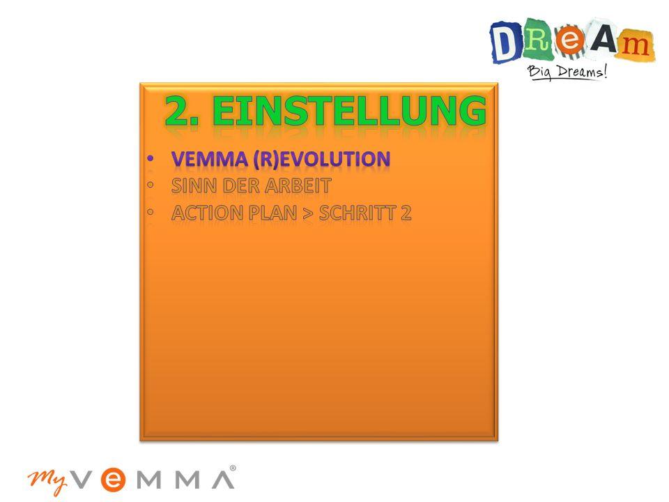 2. einstellung VemmA (R)evolution sinn der Arbeit