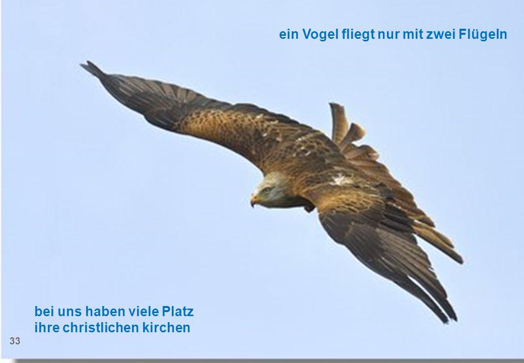 ein Vogel fliegt nur mit zwei Flügeln