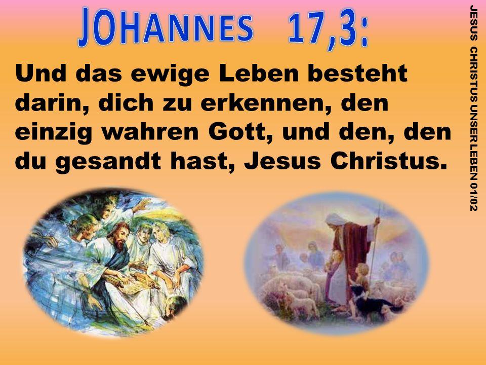 JOHANNES 17,3: Und das ewige Leben besteht darin, dich zu erkennen, den einzig wahren Gott, und den, den du gesandt hast, Jesus Christus.