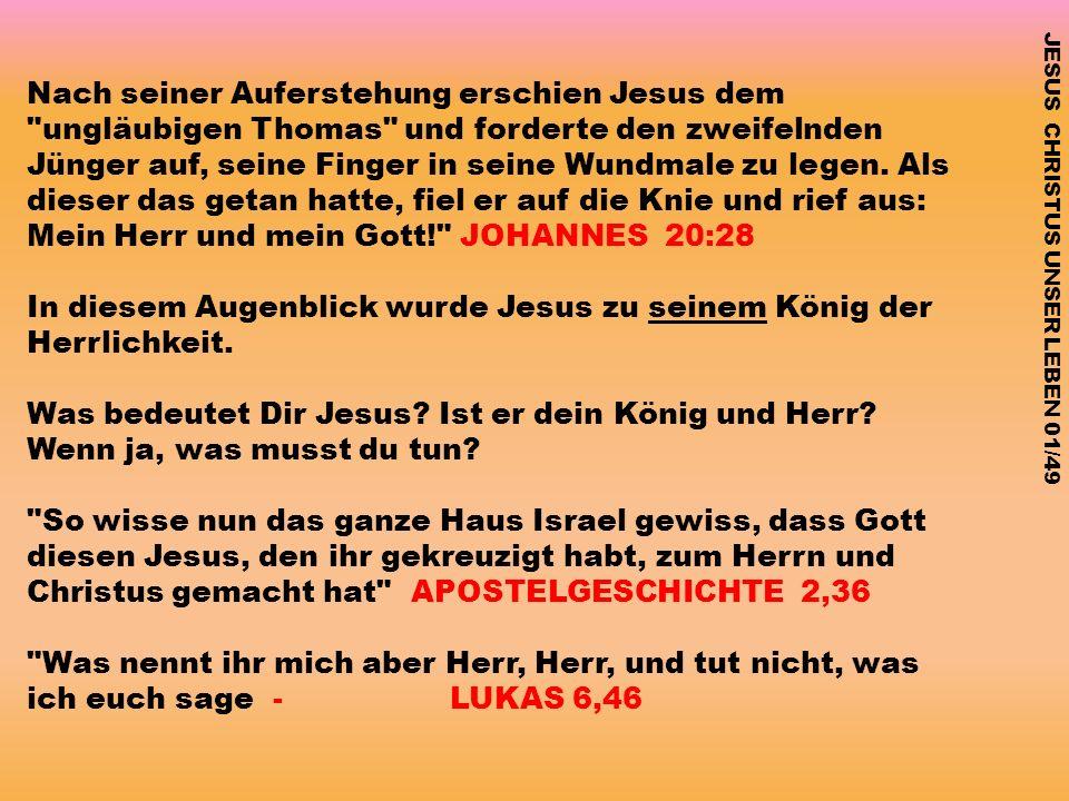 Mein Herr und mein Gott! JOHANNES 20:28