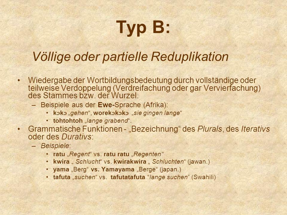 Typ B: Völlige oder partielle Reduplikation