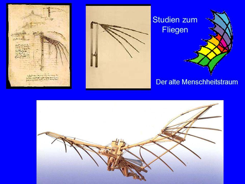 Studien zum Fliegen Der alte Menschheitstraum