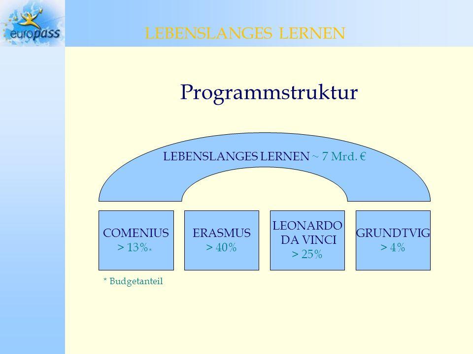 Programmstruktur LEBENSLANGES LERNEN LEBENSLANGES LERNEN