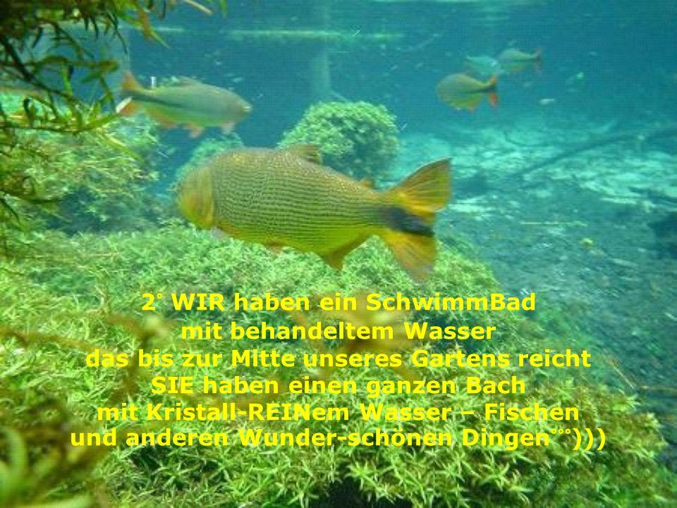 2° WIR haben ein SchwimmBad mit behandeltem Wasser