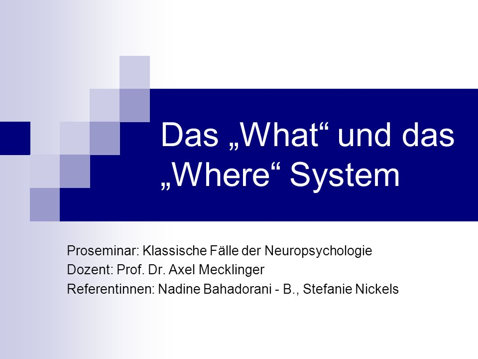 """Das """"What und das """"Where System"""