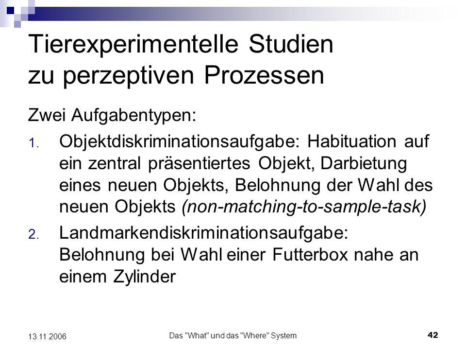Tierexperimentelle Studien zu perzeptiven Prozessen