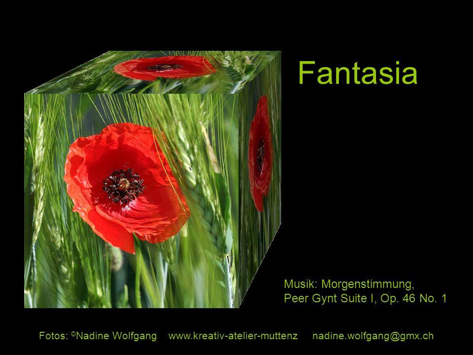 Fantasia Musik: Morgenstimmung, Peer Gynt Suite I, Op. 46 No. 1