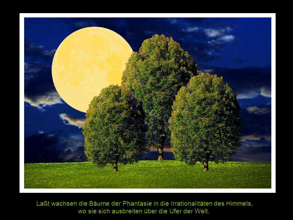 Laßt wachsen die Bäume der Phantasie in die Irrationalitäten des Himmels, wo sie sich ausbreiten über die Ufer der Welt.
