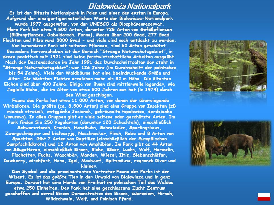 Białowieża Nationalpark