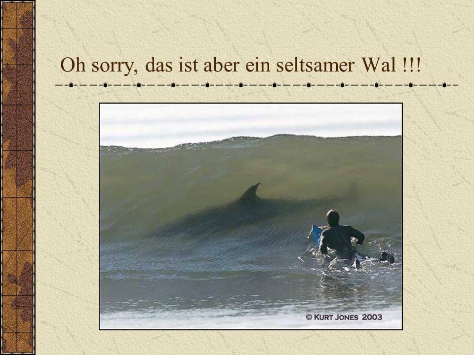 Oh sorry, das ist aber ein seltsamer Wal !!!