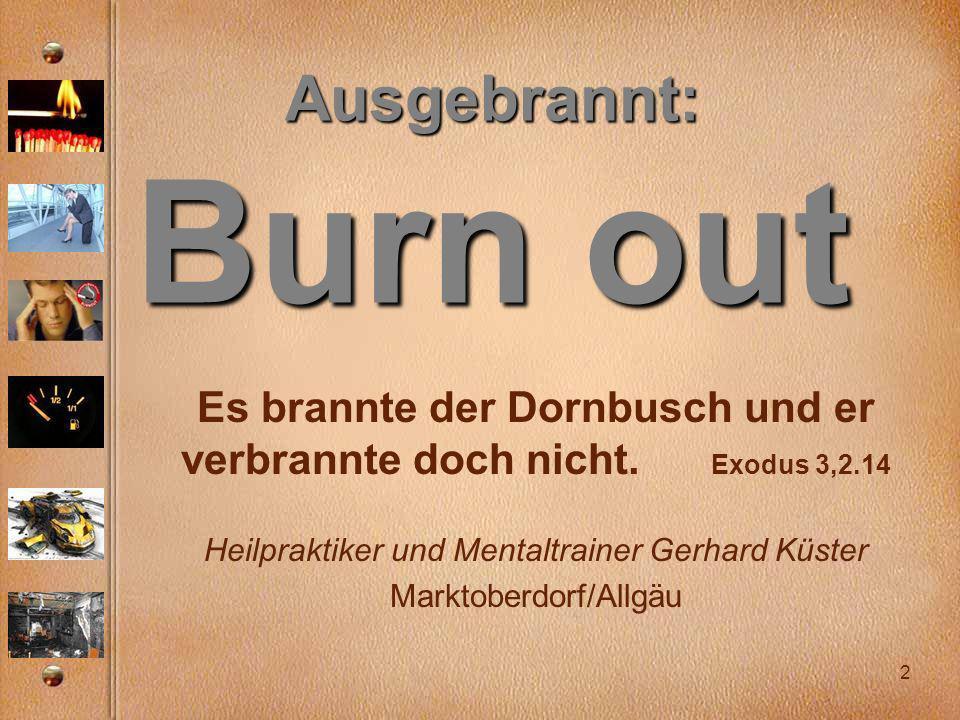 Es brannte der Dornbusch und er verbrannte doch nicht. Exodus 3,2.14