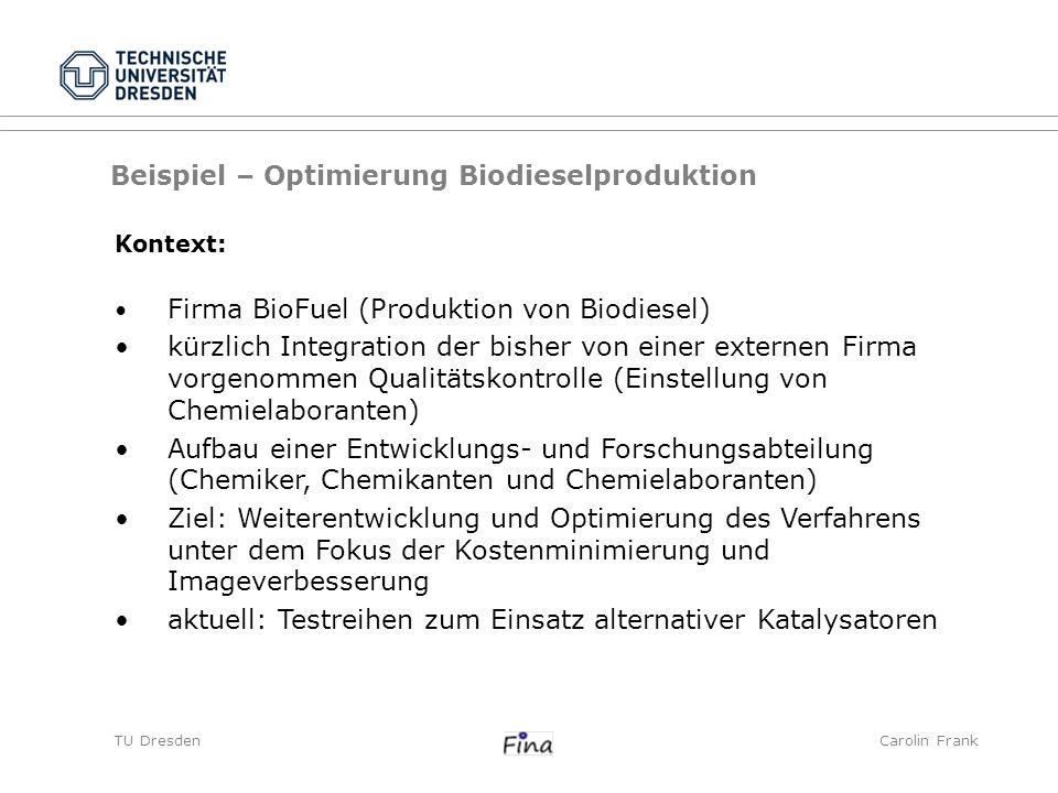 Beispiel – Optimierung Biodieselproduktion