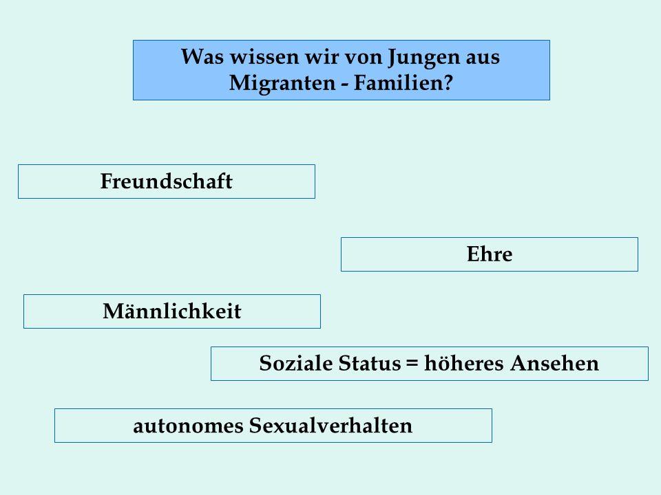 Was wissen wir von Jungen aus Migranten - Familien