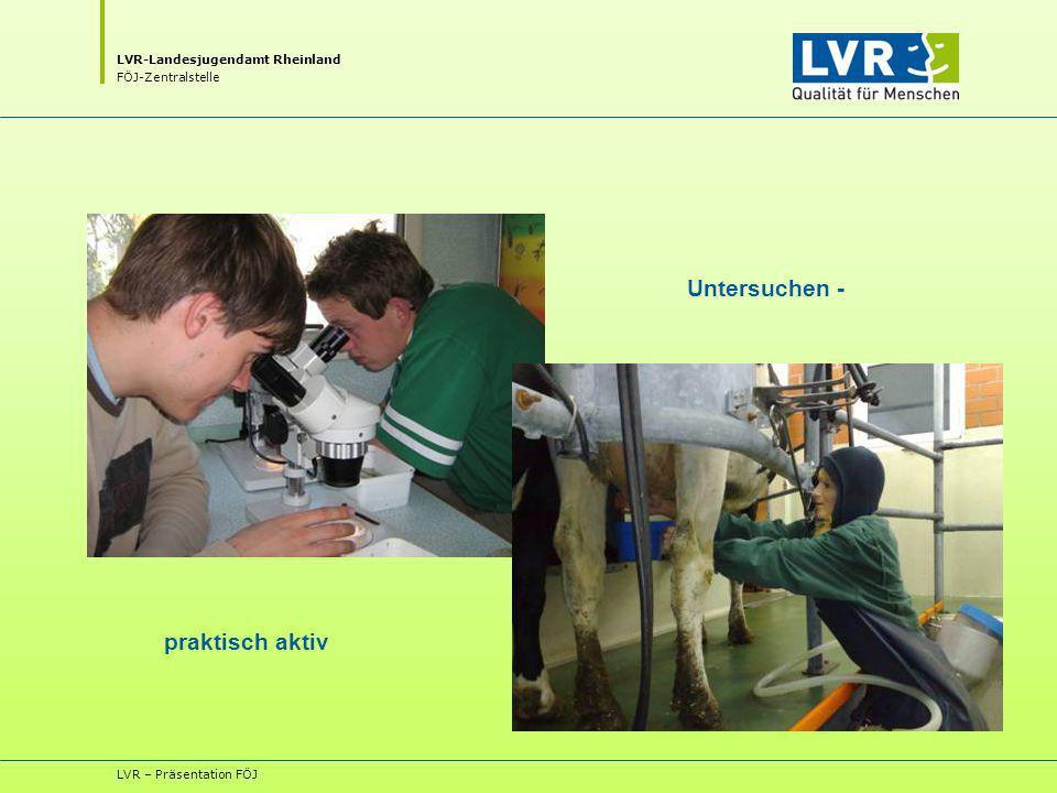 Untersuchen - praktisch aktiv LVR – Präsentation FÖJ