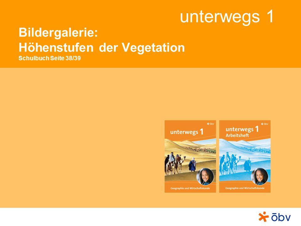 Bildergalerie: Höhenstufen der Vegetation Schulbuch Seite 38/39