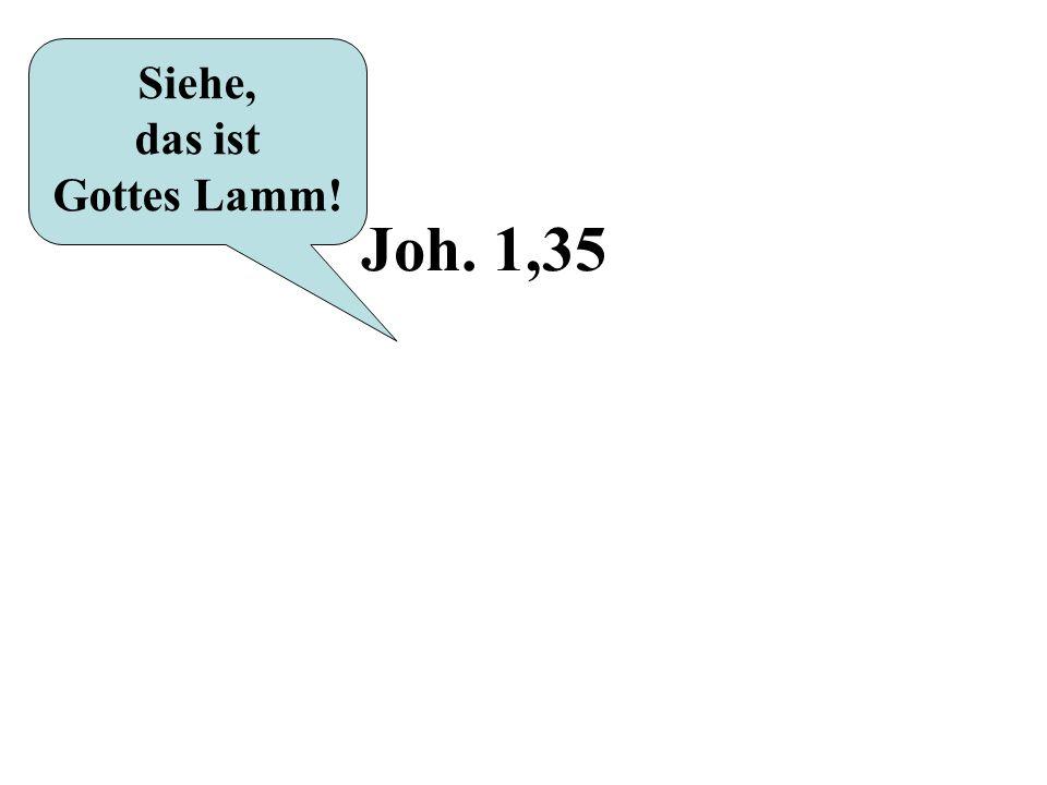 Siehe, das ist Gottes Lamm! Joh. 1,35