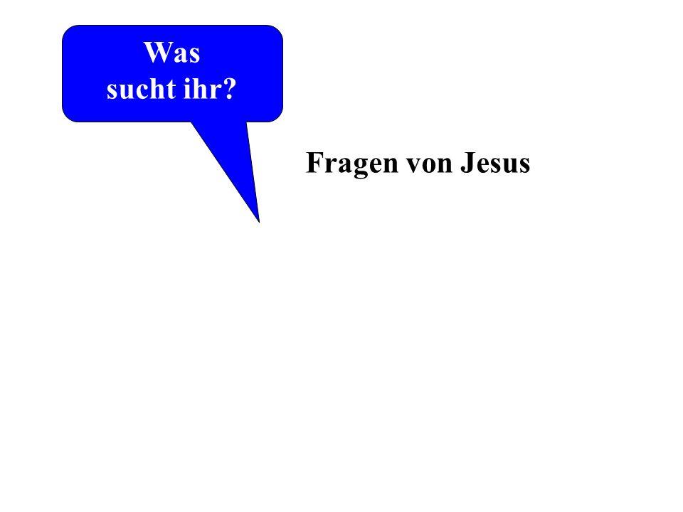 Was sucht ihr Laut Johannes-Evangelium die ersten Worte von Jesus Fragen von Jesus