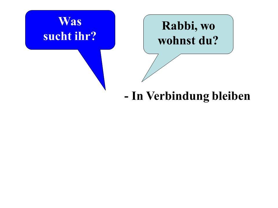 Was sucht ihr Rabbi, wo wohnst du - In Verbindung bleiben