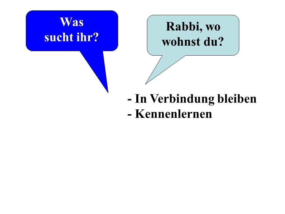 Was sucht ihr Rabbi, wo wohnst du - In Verbindung bleiben - Kennenlernen