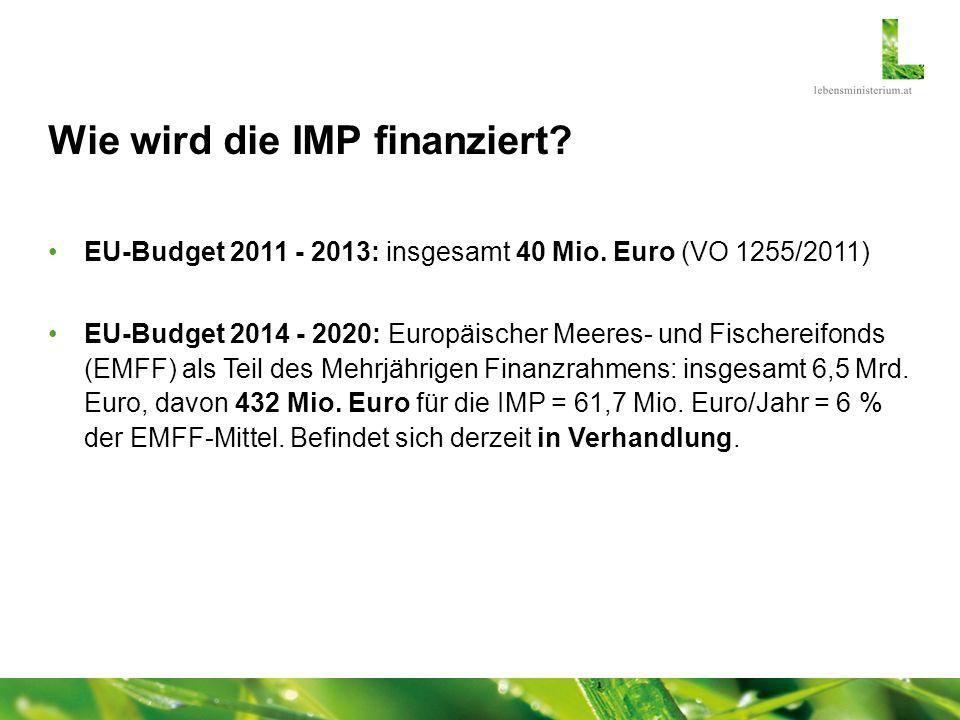 Wie wird die IMP finanziert