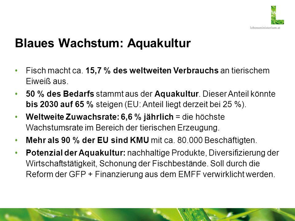 Blaues Wachstum: Aquakultur