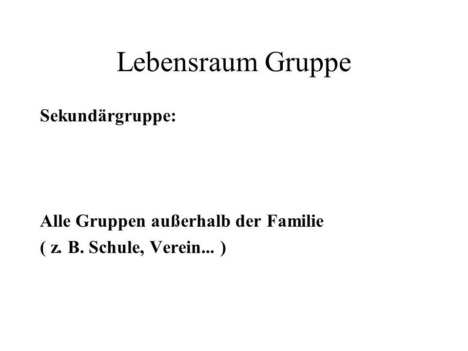 Lebensraum Gruppe Sekundärgruppe: Alle Gruppen außerhalb der Familie