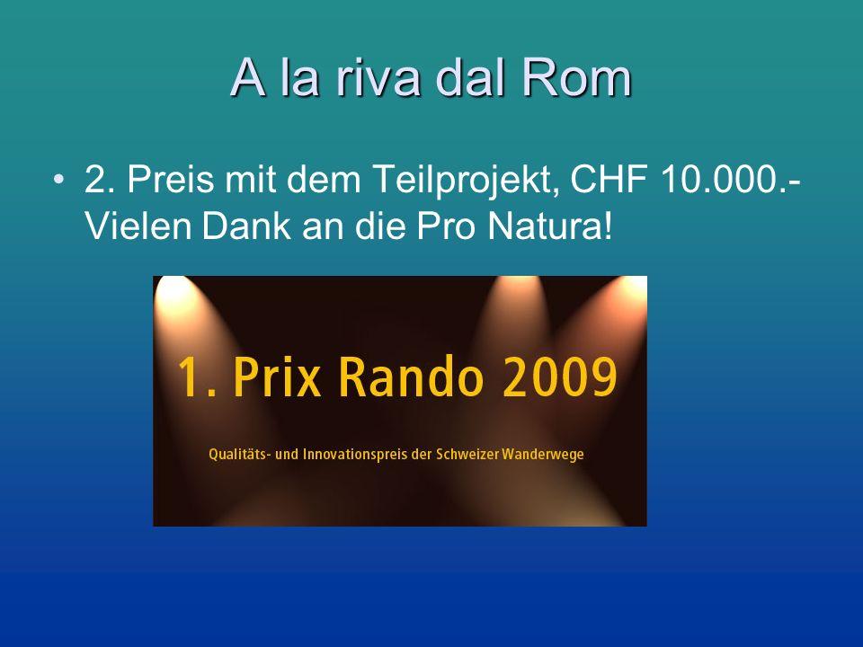 A la riva dal Rom 2. Preis mit dem Teilprojekt, CHF 10.000.- Vielen Dank an die Pro Natura!