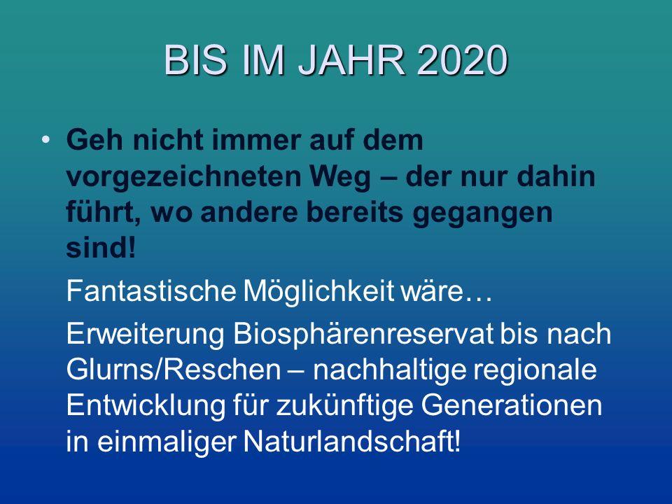 BIS IM JAHR 2020 Geh nicht immer auf dem vorgezeichneten Weg – der nur dahin führt, wo andere bereits gegangen sind!