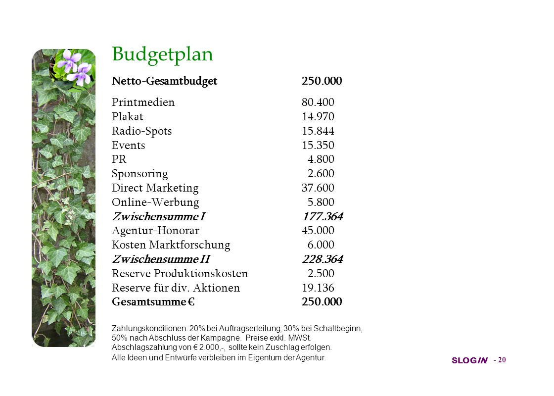 Budgetplan Netto-Gesamtbudget 250.000