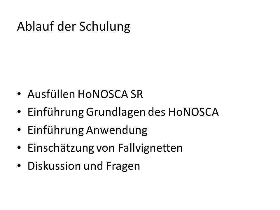 Ablauf der Schulung Ausfüllen HoNOSCA SR