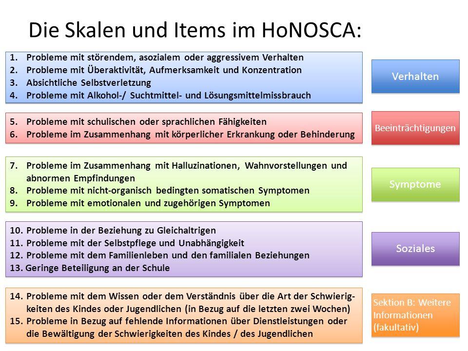 Die Skalen und Items im HoNOSCA:
