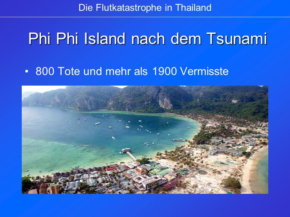 Phi Phi Island nach dem Tsunami