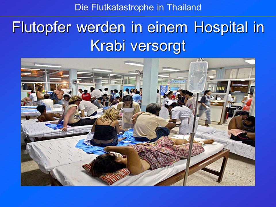 Flutopfer werden in einem Hospital in Krabi versorgt