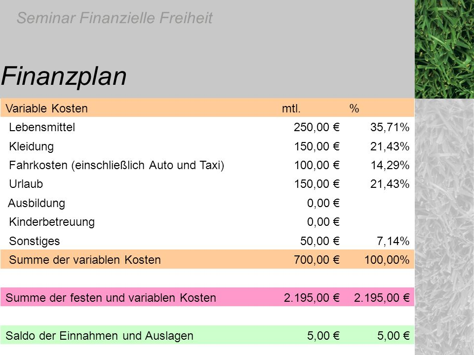 Finanzplan Variable Kosten mtl. % Lebensmittel 250,00 € 35,71%