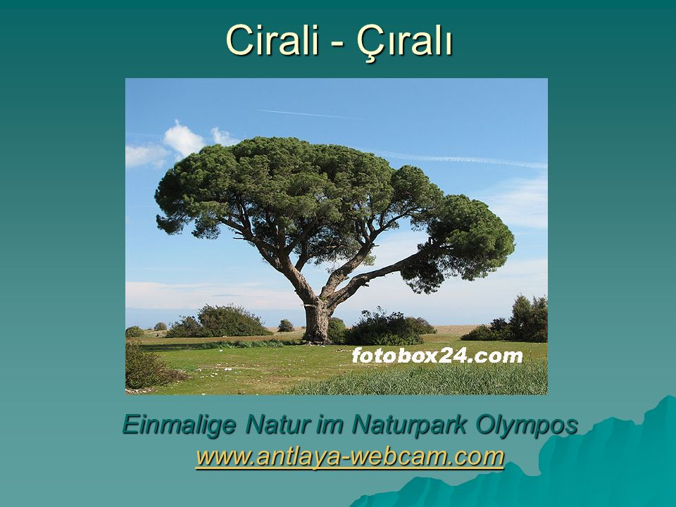 Einmalige Natur im Naturpark Olympos www.antlaya-webcam.com