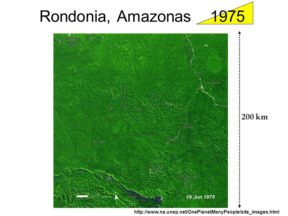 Rondonia, Amazonas 1975 200 km http://www.na.unep.net/OnePlanetManyPeople/site_images.html