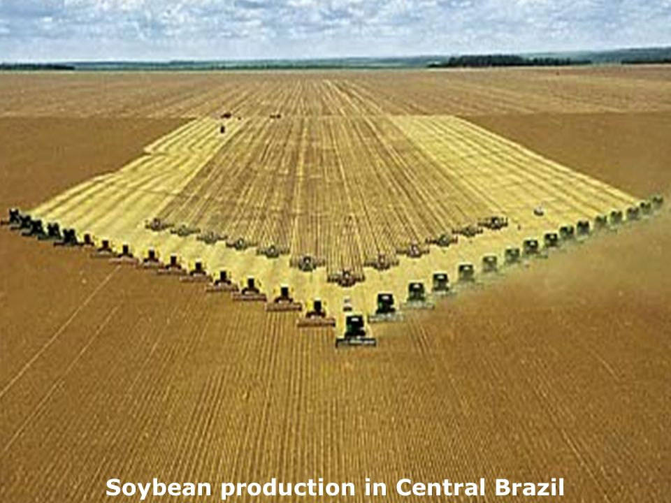 Soybean production in Central Brazil