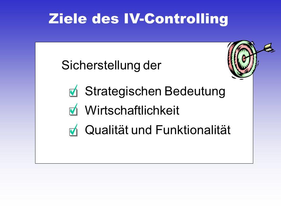 Ziele des IV-Controlling