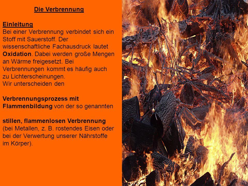 Die Verbrennung Einleitung.