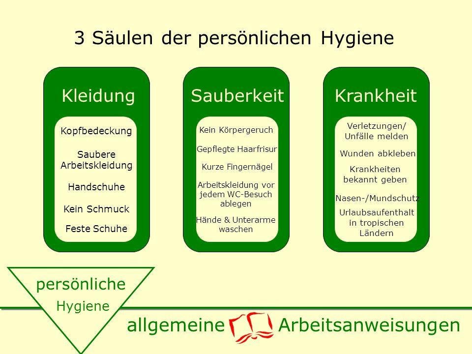 3 Säulen der persönlichen Hygiene