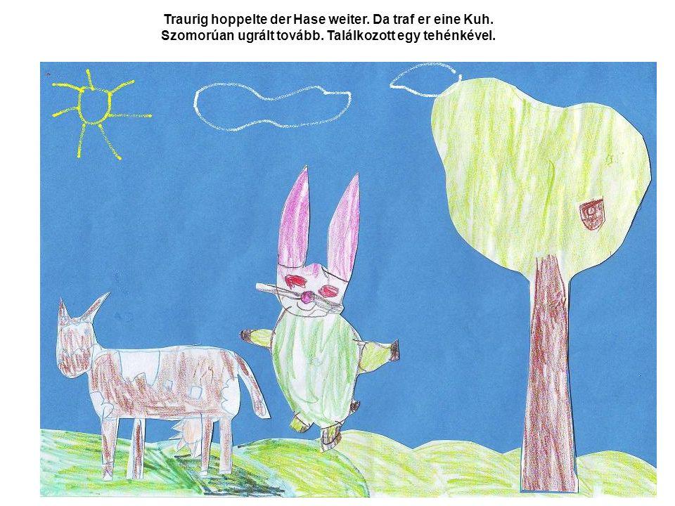 Traurig hoppelte der Hase weiter. Da traf er eine Kuh.